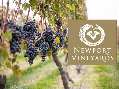 newport vineyards is just 5 minutes outside downtown newport ri