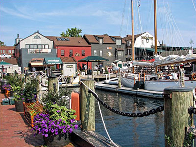 newport ri timeshare sales and rentals
